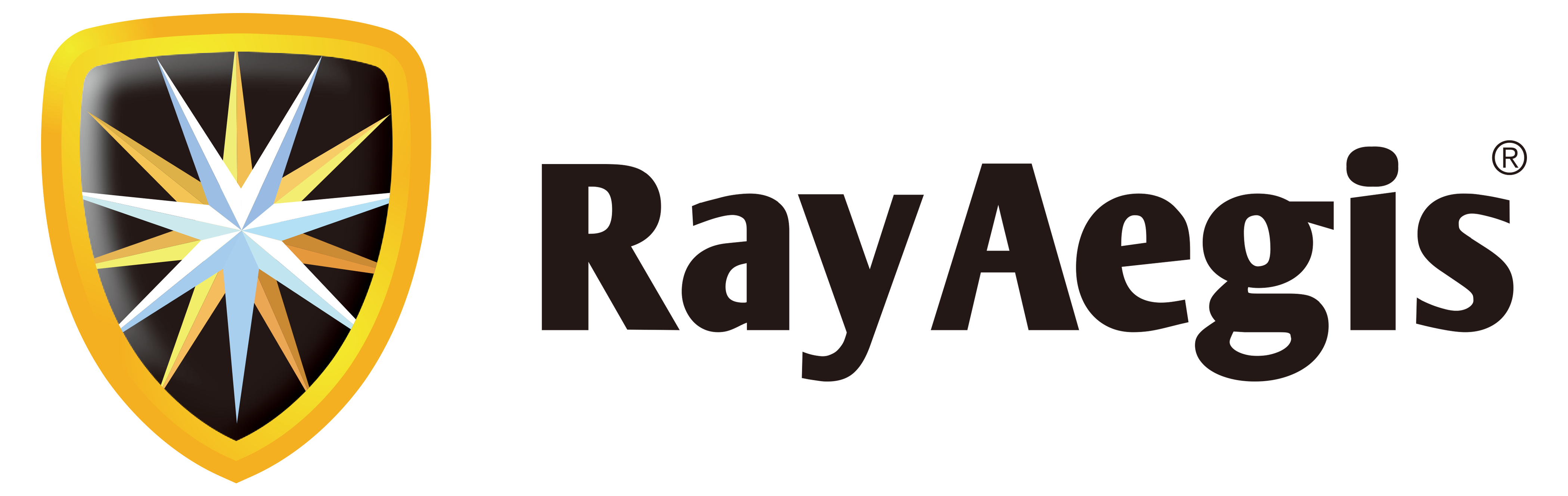RayAegis Information Security
